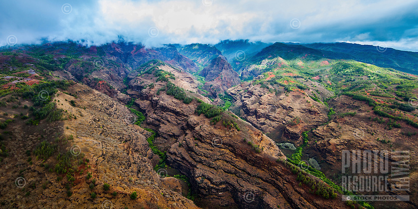An aerial view of Waimea Canyon on Kaua'i, with an assortment of trees and valleys stretching off into the distant mountain range.