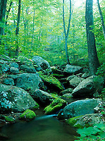 River near the Blue Ridge Parkway and the Shenandoah National Park.