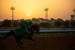 RIYADH,SAUDI ARABIA-FEB 27:  Track scene at King Abdulaziz Racetrack on February 28,2020 in Riyadh,Saudi Arabia. Kaz Ishida/Eclipse Sportswire/CSM