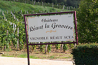Vineyard. Chateau Reaut la Graviere. Entre deux Mers. Bordeaux, France