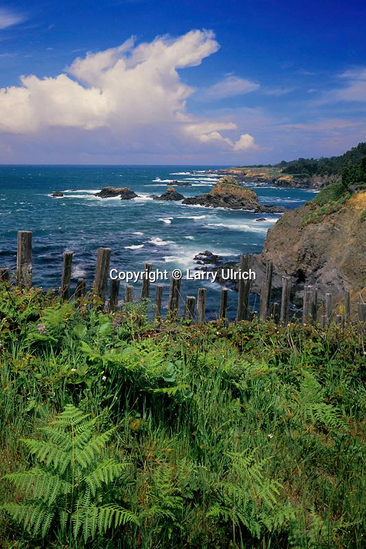 Split redwood fence<br />   north of Mendocino<br /> Mendocino County<br /> California