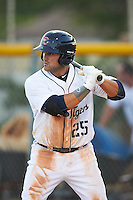 Lakeland Flying Tigers first baseman Wade Hinkle (25) at bat during a game against the Tampa Yankees on April 7, 2016 at Henley Field in Lakeland, Florida.  Tampa defeated Lakeland 9-2.  (Mike Janes/Four Seam Images)