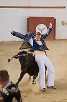 Europe/France/Aquitaine/40/Landes/ Vielle-Tursan: lors de la course landaise organisée pour la fête du village // France, Landes, Vielle Tursan, performer Elodie Poulitou, the only women ecarteur during a bullfight at the Fete Village Festival