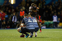 Seb Davies and Macauley Cook of Cardiff Blues look dejected as Edinburgh players celebrate their win at full time of the Guinness PRO14 match between Cardiff Blues and Edinburgh Rugby at BT Sport Cardiff Arms Park, Cardiff, Wales on 1 September 2017. Photo by Mark  Hawkins.