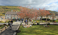 Pictured: The Memorial Garden Friday 21 October 2016<br />