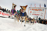 Tom Thurston dogs leap to go at the start line on Sunday during the restart day of Iditarod 2009 in Willow , Alaska