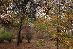 Golan Heights, Fall at Kibbutz Marom Golan