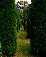 Topiary and a beech hedge lead the eye to a pinnacle from All Souls, Oxford