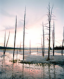 USA, Wyoming, bare trees reflecting in water at Lower Geyser Basin, Yellowstone National Park