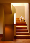 September 10, 2002.   Janice and Tom Cella's craftsman-style house  at 1739 Forest Parkway in Park Hill.  The family dog, Cirrus, stands on the stairs that lead to the master bedroom.  (Rocky Mountain News/ellen jaskol)