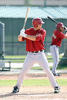 Paul Goldschmidt, Arizona Diamondbacks 2010 minor league spring training..Photo by:  Bill Mitchell/Four Seam Images.