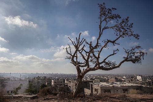 08.06.14 Shejaia , Gaza. Landscape