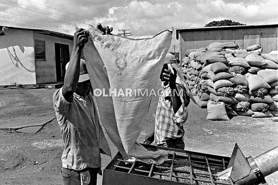 Cooperativa agricola em Leon. Nicaragua. 1981. Foto de Juca Martins.