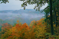 Tinkers Creek Gorge<br />