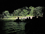 Sibun River-Cave Tubing