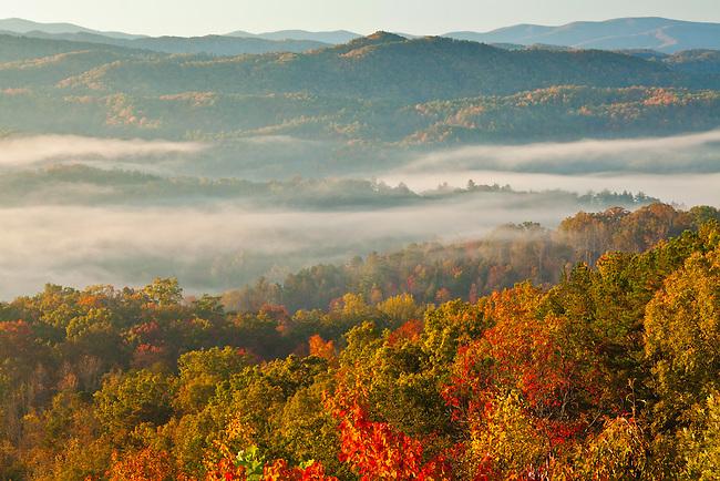 Autumn lights the morning landscape