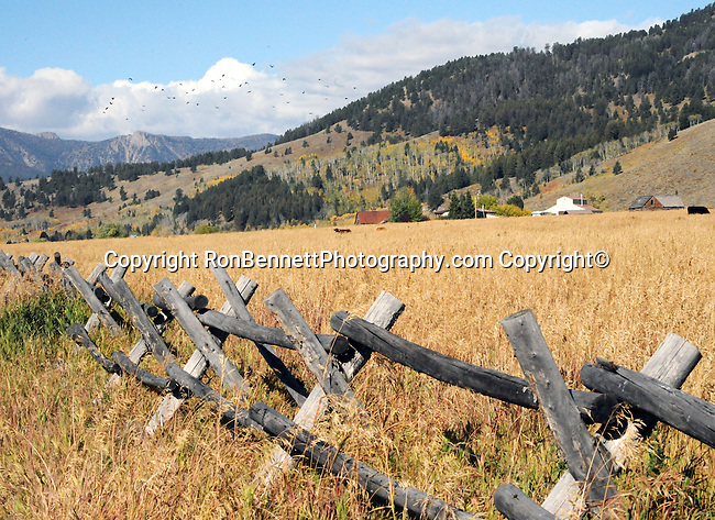 """Montana Big Sky Country,  Montana is a state in the Western United States, The western third of Montana contains numerous mountain ranges fo a total of 77 named ranges of the Rocky Mountains, """"Big Sky Country,"""" """"Land of the Shining Mountains,"""" """"The Last Best Place,"""" Fine Art Photography by Ron Bennett, Fine Art, Fine Art photo, Art Photography,"""