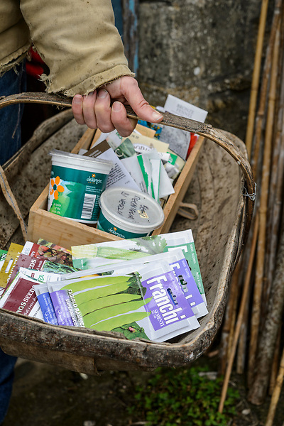 Selection of seeds ready to sow