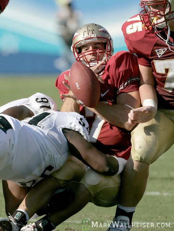 Florida State quarterback Christian Ponder tries to recover his own fumble after having it stripped on a pass attempt in the first half of the NCAA football game between the Florida State Seminoles and the University of Colorado Buffaloes in Jacksonville, Florida September 27, 2008.  Florida State defeated Colorado 39-21.(Mark Wallheiser/TallahasseeStock.com)