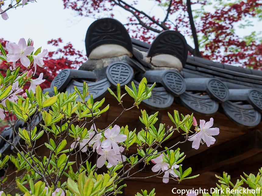 D&auml;cher im Changdeokgung Palast, Seoul, S&uuml;dkorea, Asien, UNESCO-Weltkulturerbe<br /> roofs inside palace Changdeokgung,  Seoul, South Korea, Asia UNESCO world-heritage