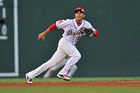 Shortstop Javier Guerra (31) of the Greenville Drive in a game against the Asheville Tourists on Thursday, August 13, 2015, at Fluor Field at the West End in Greenville, South Carolina. Asheville won, 8-1. (Tom Priddy/Four Seam Images)