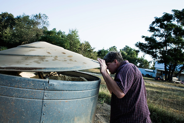 September 13, 2007, Louisburg, NC..Michael Jones, owner of Mae Farms, a sustainable hog farm, checks his feed stocks in the morning as he makes the rounds of his hog pens. The pigs roam free in the pen, feeding on the natural vegetation and the grain feed.