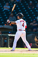 Surprise Saguaros catcher Jeremy Martinez (4), of the St. Louis Cardinals organization, at bat during an Arizona Fall League game against the Peoria Javelinas at Surprise Stadium on October 17, 2018 in Surprise, Arizona. (Zachary Lucy/Four Seam Images)
