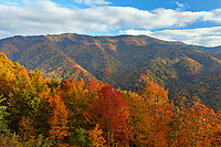 Autumn scene along Newfound Gap road in Great Smoky Mountains National Park, North Carolina