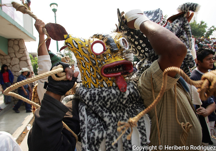 Mexico (05.05.2005) A Native naua wearing a Tecuan or Tiger mask prepares to the Pelea de Tecuanes or Fight of the Tigers during the celebration of the Native people to ask Gods for rain according to the Pre-Hispanic cultures that they inheritated from their ancestors in the town of Zitlala, in the southern state of Guerrero, some 300 km from Mexico City. Photo by Heriberto Rodriguez © Heriberto Rodriguez/