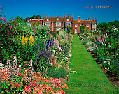 Tom Mackie, FLOWERS, photos, Helmingham Hall Gardens, Helmingham, Suffolk, England, GBTM944698-1,#F# Garten, jardín