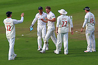 Timm van der Gugten (C) of Glamorgan celebrates taking the wicket of David Masters during Glamorgan CCC vs Essex CCC, Specsavers County Championship Division 2 Cricket at the SSE SWALEC Stadium on 23rd May 2016