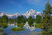 """Grand Teton Reflections, Grand Teton National Park<br /> <br /> For production prints or stock photos click the Purchase Print/License Photo Button in upper Right; for Fine Art """"Custom Prints"""" contact Daryl - 208-709-3250 or dh@greater-yellowstone.com"""