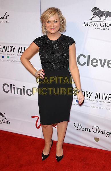 "Amy Poehler.Attending Keep Memory Alive's 17th Annual ""Power of Love Gala"" honors Quincy Jones and Sir Michael Caine with 80th Birthday Celebration at MGM Grand, Las Vegas, NV, USA, 13th April 2013..full length black dress cap sleeve hand on hip beaded top shoes .CAP/ADM/MJT.© MJT/AdMedia/Capital Pictures"