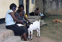 Women farmers calling veterinarian services for goat disease