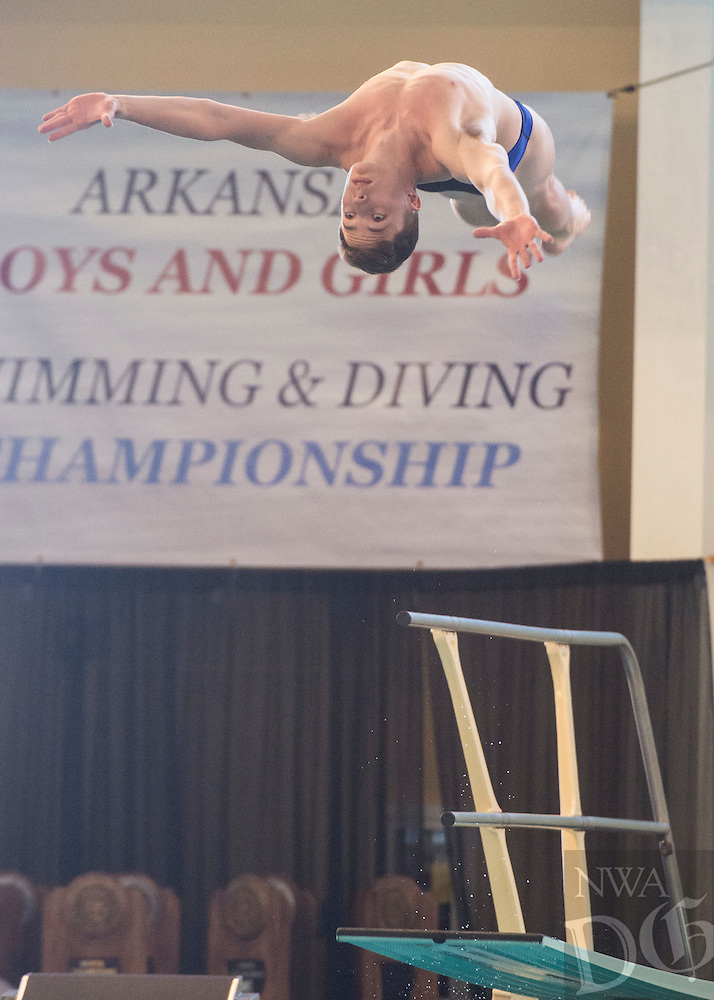 NWA Democrat-Gazette/ANTHONY REYES @NWATONYR<br /> Taylor Savage of Arkadelphia dives during the Arkansas State Dive meet Friday, Feb. 24, 2017 at the Bentonville Community Center in Bentonville.