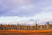 Fall landscape on the farm in Quebec