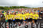 Kerry's Eye, Rose of Tralee 10k 2014