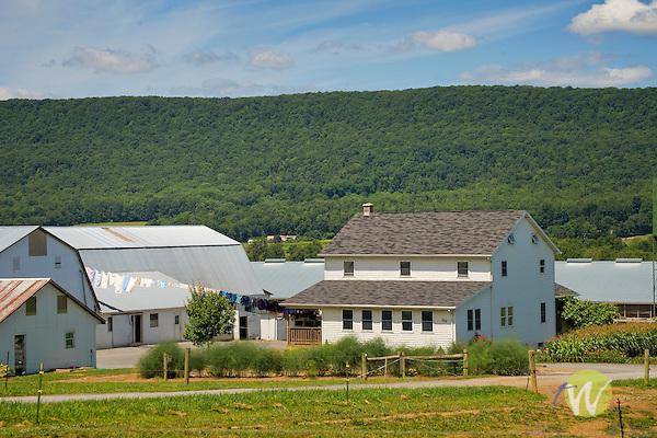 Sugar Valley amish farmhouse, Clinton County, PA.