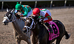 HALLANDALE BEACH, FL - JANUARY 27: Tommy Macho #8, with Luis Saez riding, wins the Fred W. Hooper Stakes on Pegasus World Cup Invitational Day at Gulfstream Park Race Track on January 27, 2018 in Hallandale Beach, Florida. (Photo by Kazushi Ishida/Eclipse Sportswire/Getty Images)