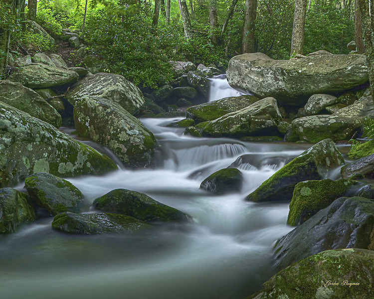 Dreamlike flowing waters along the Roaring Fork Motor Nature Trail. HDR Image