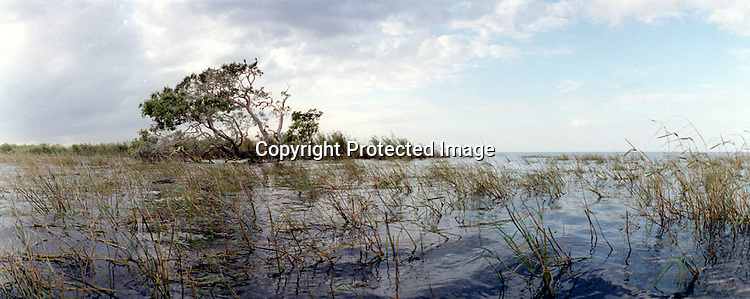 Lake Okeechobee Day 2.EXTRA PHOTO. Erik Kellar/Staff