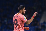 Luis Suarez of FC Barcelona gestures during the La Liga 2018-19 match between RDC Espanyol and FC Barcelona at Camp Nou on 08 December 2018 in Barcelona, Spain. Photo by Vicens Gimenez / Power Sport Images