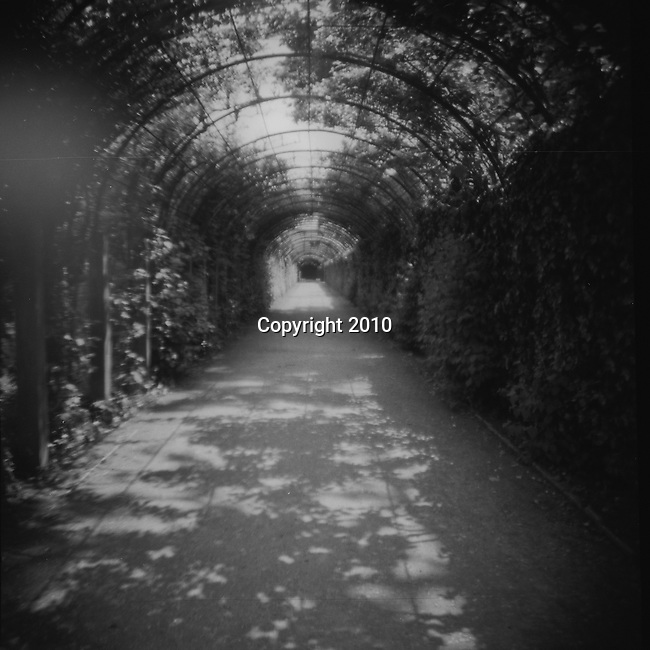 "A tunnel of vegetation works its way through Garden Mirabelle.  This magical garden can be seen in the classic film ""The Sound of Music.""  This was shot using a Diana F+ Camera on 120mm film and processed in NYC."