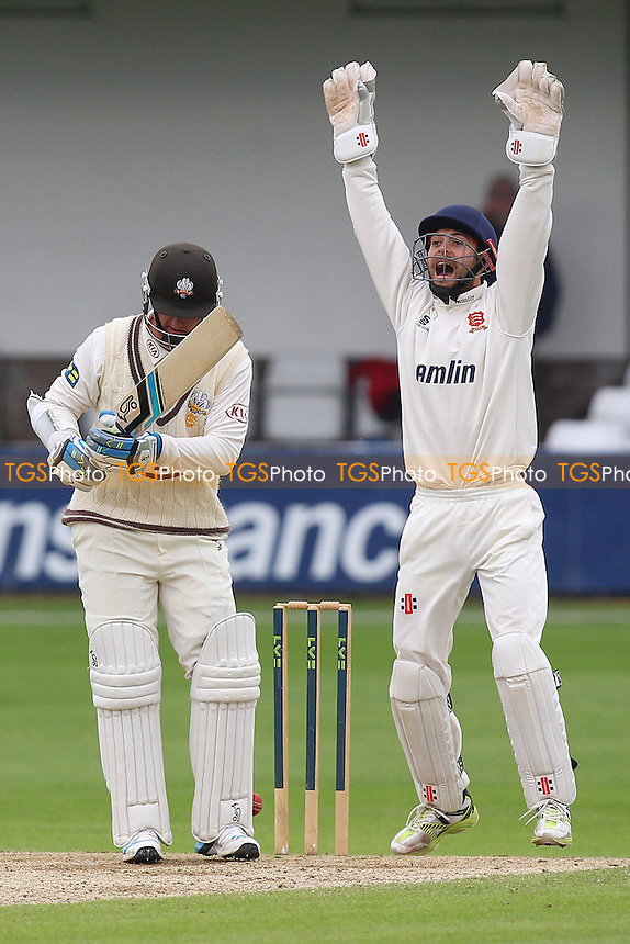 James Foster of Essex leaps to celebrate the wicket of Steve Davies from the bowling of Monty Panesar - Essex CCC vs Surrey CCC - LV County Championship Division Two Cricket at the Essex County Ground, Chelmsford, Essex - 27/05/14 - MANDATORY CREDIT: Gavin Ellis/TGSPHOTO - Self billing applies where appropriate - 0845 094 6026 - contact@tgsphoto.co.uk - NO UNPAID USE