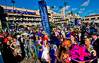 DEL MAR, CA - NOVEMBER 04: scenes from Day 2 of the 2017 Breeders' Cup World Championships at Del Mar Racing Club on April 3, 2017 in Del Mar, California. (Photo by Scott Serio/Eclipse Sportswire/Breeders Cup)
