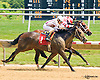 Jockey Jills Dream winning at Delaware Park on 6/27/16