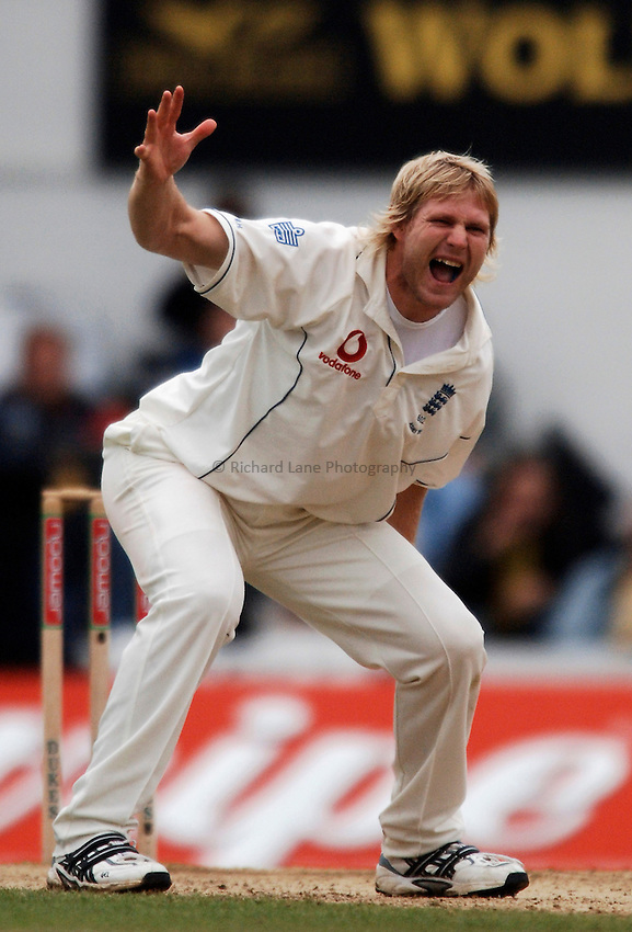 Photo: Glyn Thomas..England v Australia. nPower Test Series. The Ashes 2005..11/09/2005..England's Matthew Hoggard appeals successfully for the wicket of Adam Gilchrist.