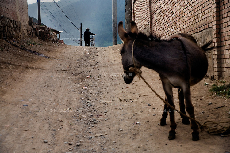 A man walks past a donkey on a dirt road in Xiahe, Gansu, China. Xiahe, home of the Labrang Monastery, is an important site for Tibetan Buddhists.  The population of the town is divided between ethnic Tibetans, Muslims, and Han Chinese.