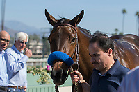 ARCADIA, CA FEBRUARY 4: #3 Dream Tree, ridden by Drayden Van Dyke, in the winners circle after winning the Las Virgenes Stakes (Grade ll) on February 4, 2018, at Santa Anita Park, in Arcadia, Ca. (Photo by Casey Phillips/ Eclipse Sportswire/ Getty Images)