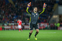 Vladimir Stojkovic of Serbia celebrates his side's draw at full time of the FIFA World Cup Qualifying match between Wales and Serbia at the Cardiff City Stadium, Cardiff, Wales on 12 November 2016. Photo by Mark  Hawkins.